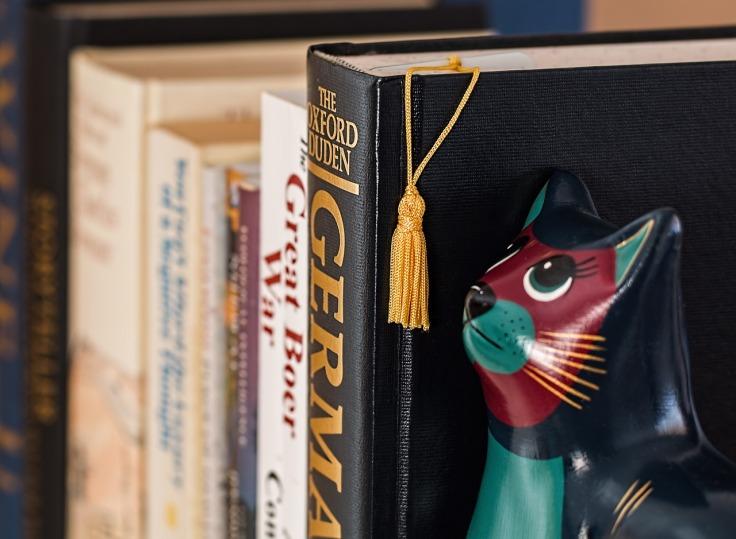 bookshelf-790392_1280