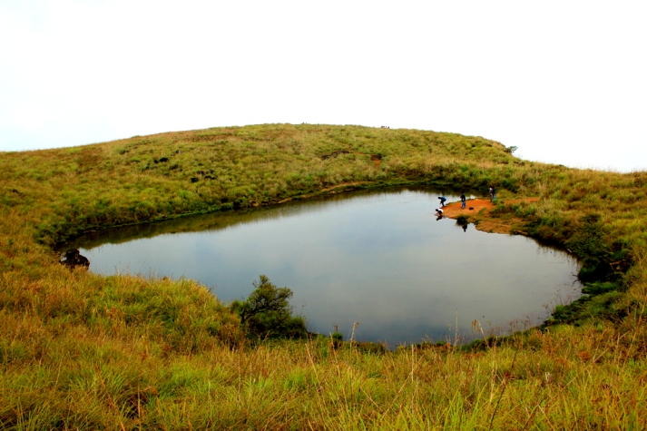 Heart_shaped_pond,_Wayanad